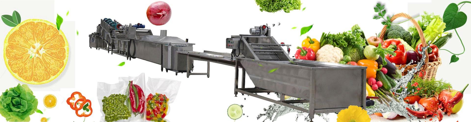 Fruit&Vegetable Processing Equipment